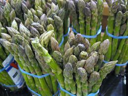 asparagus_pcojen
