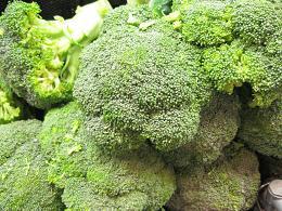 broccoli_pcojen