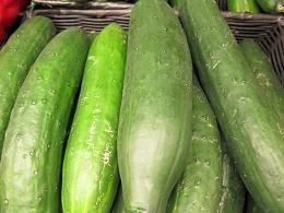 cucumber_pcojen