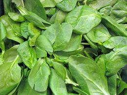 spinach_pcojen