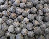 blueberries_pcojen